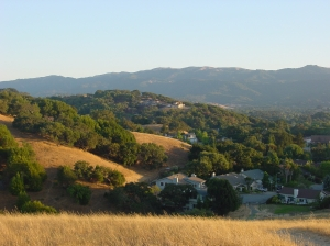 Partridge Knolls under Mt. Burdell